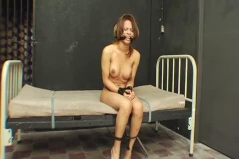 best of Pics Pornstar in bondage Ladyboys