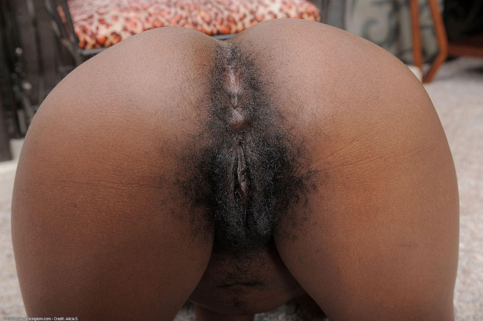 Big black ass hairy pussy