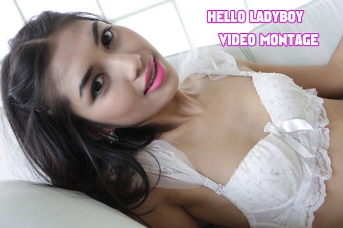 Dandelion reccomend hello ladyboy thai